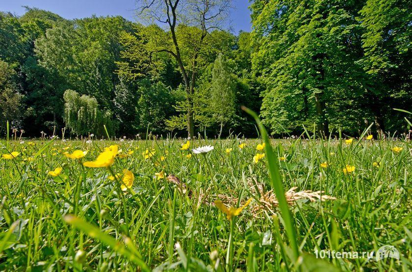 Парк в Тренчанской Теплице Nikon_D5100_Nikkor_10-24_DSC_0830_ViewPad_4_101tema_ru