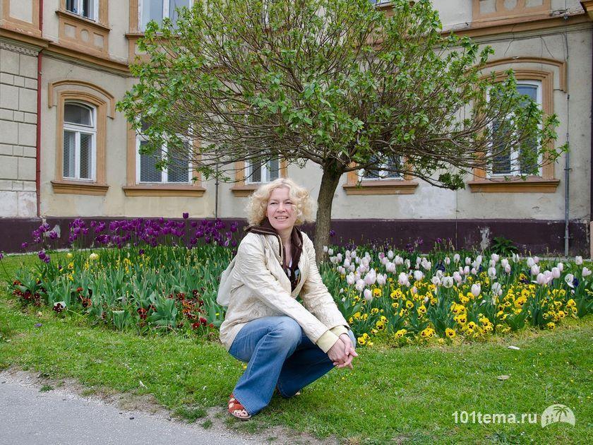 Цветочки в Тренчанской Теплице_Nikon_D5100_Nikkor_18-105_DSC_0673_ViewPad_4_101tema.ru