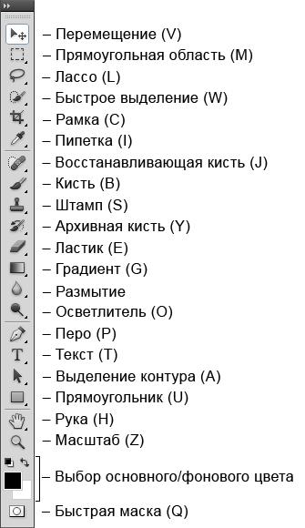 вида термобелья: название и значение инстрементов в фотошопе зависимости