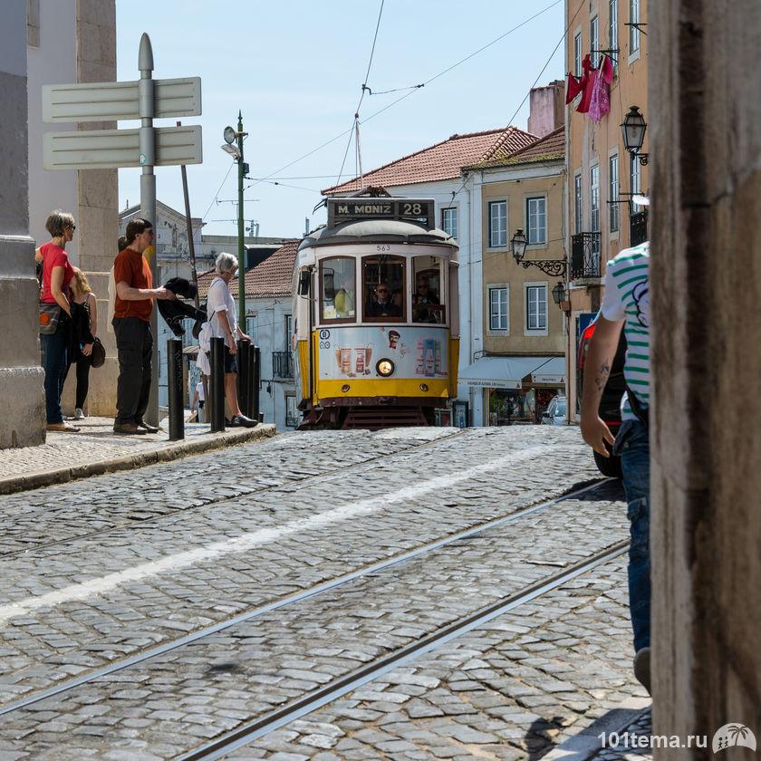 Nikon_D7100_Press_Tour_Portugal_101tema.ru_Filberd_DSC_1193_Nikkor_10-24