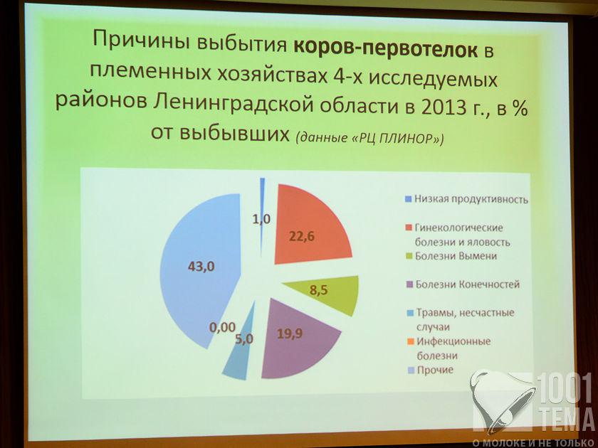 Delaval_27-30.5.14_SPB_1001tema.ru_Filberd_DOK_3399