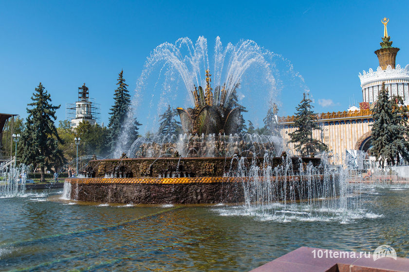 Nikkor_35-1.8G_Nikon_D800E_101tema.ru_Filberd_DOK_4557