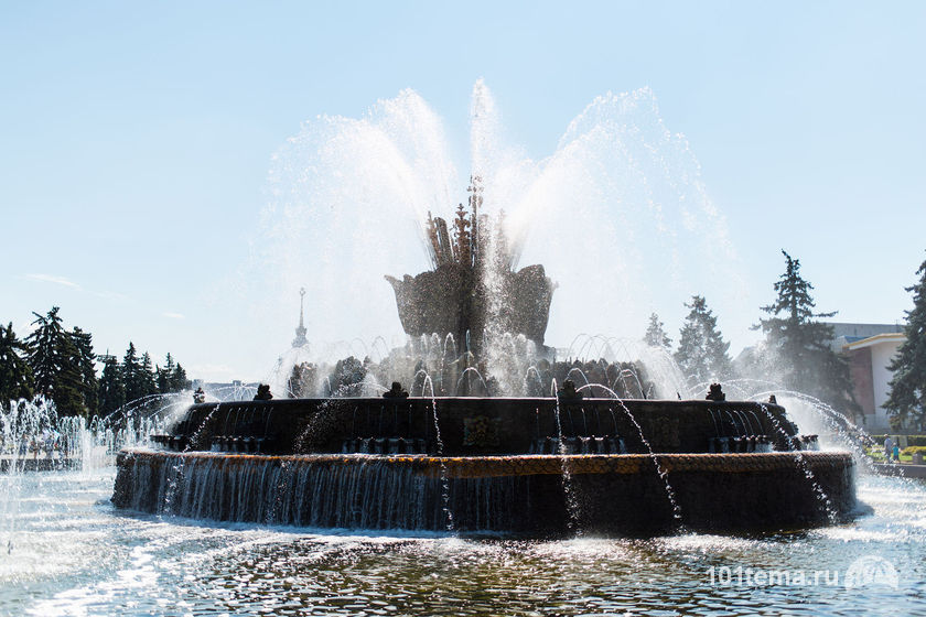Nikkor_35-1.8G_Nikon_D800E_101tema.ru_Filberd_DOK_4561